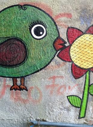 Bird Paste Up